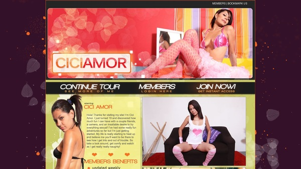 Cici Amor Account Login